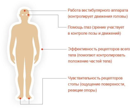 stabiloplatforma